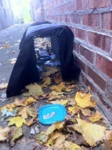 baited cat trap for trap rehearsal feeding